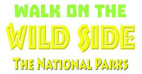 Walk on the Wild Side: The National Parks